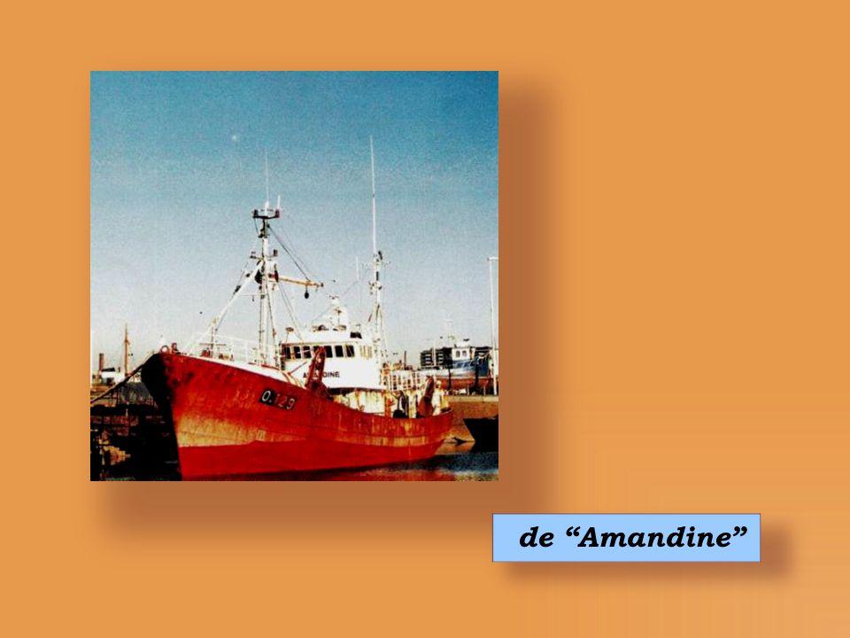 de Amandine