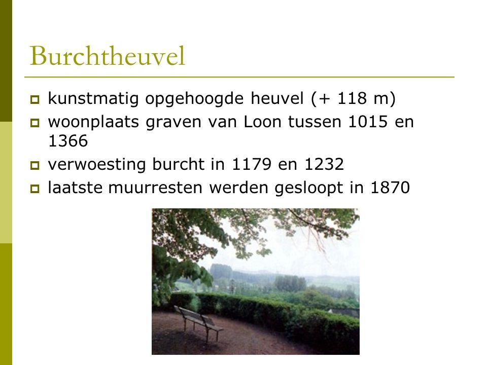 Burchtheuvel kunstmatig opgehoogde heuvel (+ 118 m)