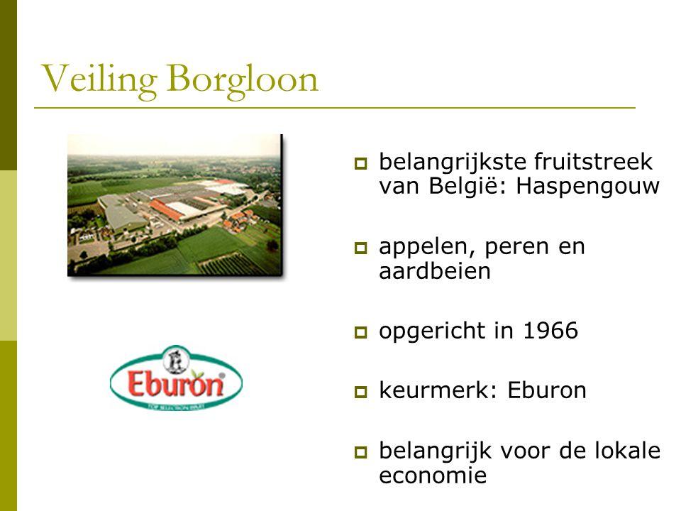 Veiling Borgloon belangrijkste fruitstreek van België: Haspengouw
