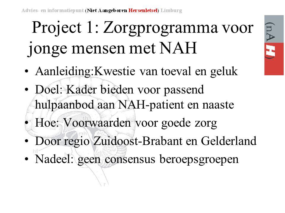 Project 1: Zorgprogramma voor jonge mensen met NAH
