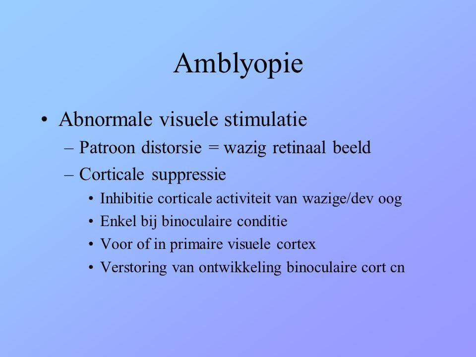 Amblyopie Abnormale visuele stimulatie