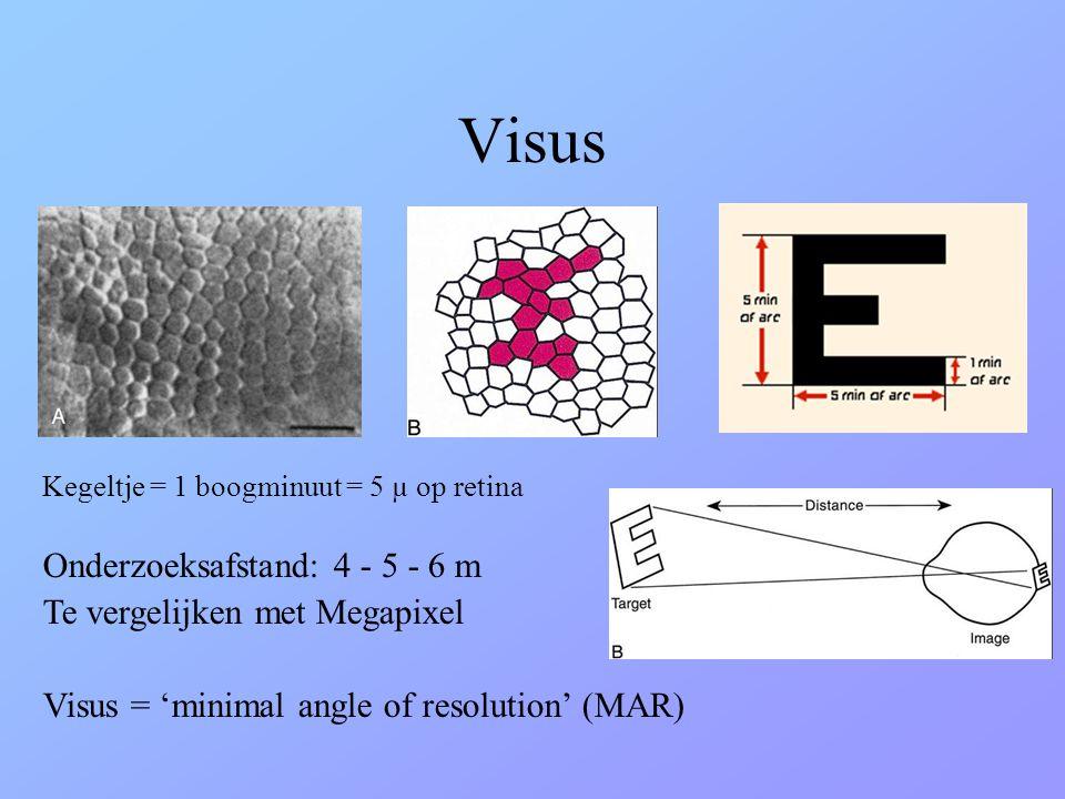 Visus Onderzoeksafstand: 4 - 5 - 6 m Te vergelijken met Megapixel