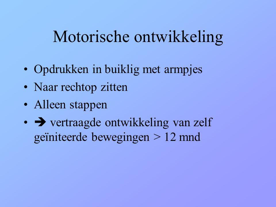 Motorische ontwikkeling