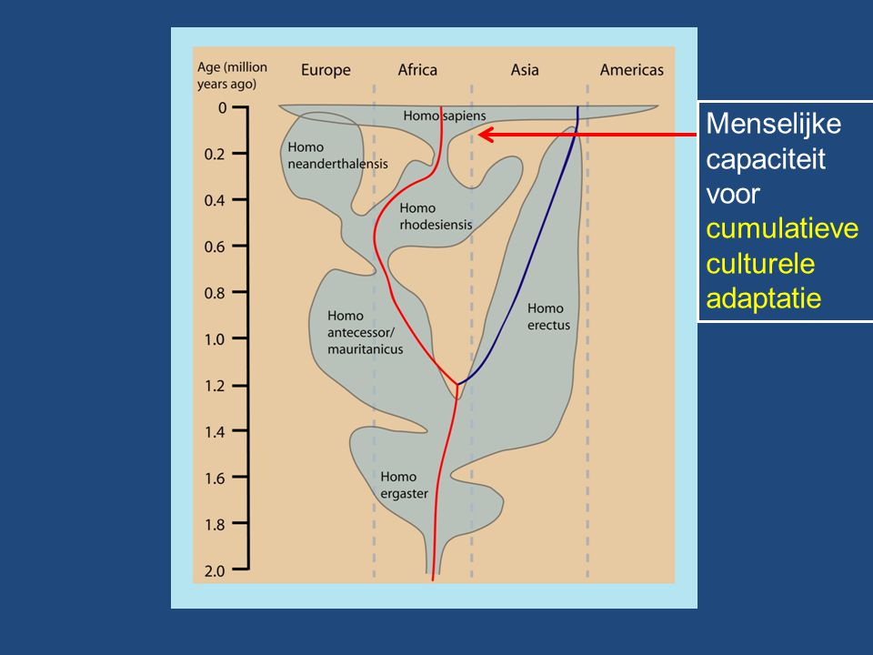 Menselijke capaciteit voor cumulatieve culturele adaptatie