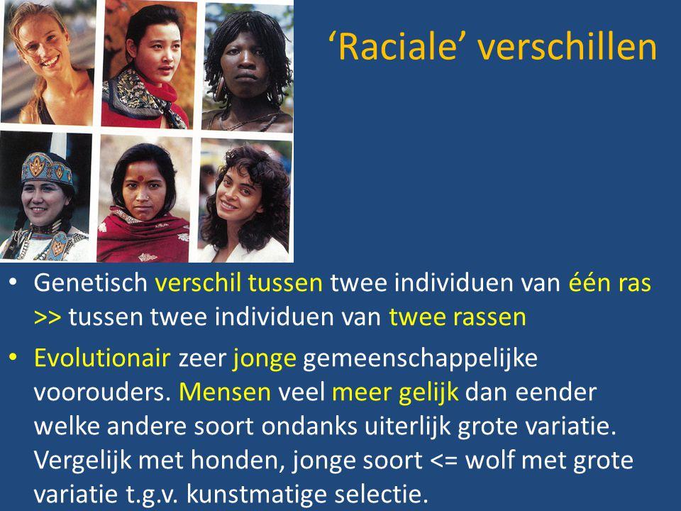 'Raciale' verschillen