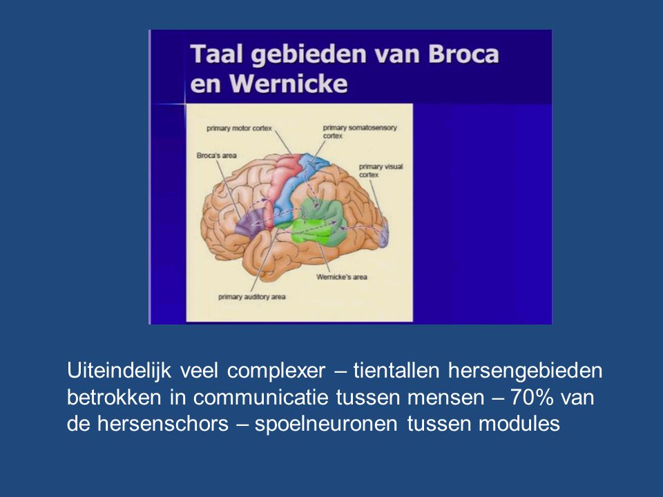 Uiteindelijk veel complexer – tientallen hersengebieden betrokken in communicatie tussen mensen – 70% van de hersenschors – spoelneuronen tussen modules