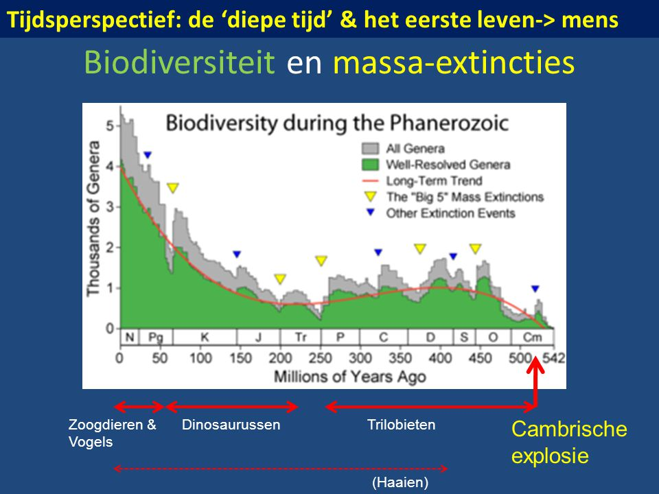 Biodiversiteit en massa-extincties