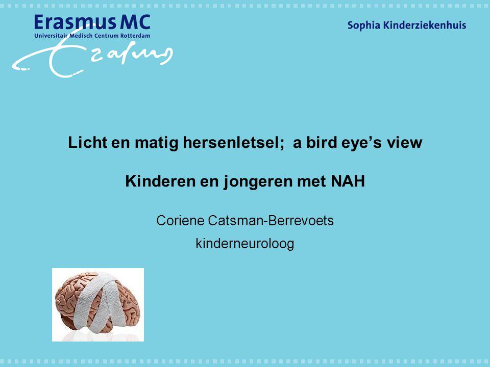 Coriene Catsman-Berrevoets kinderneuroloog