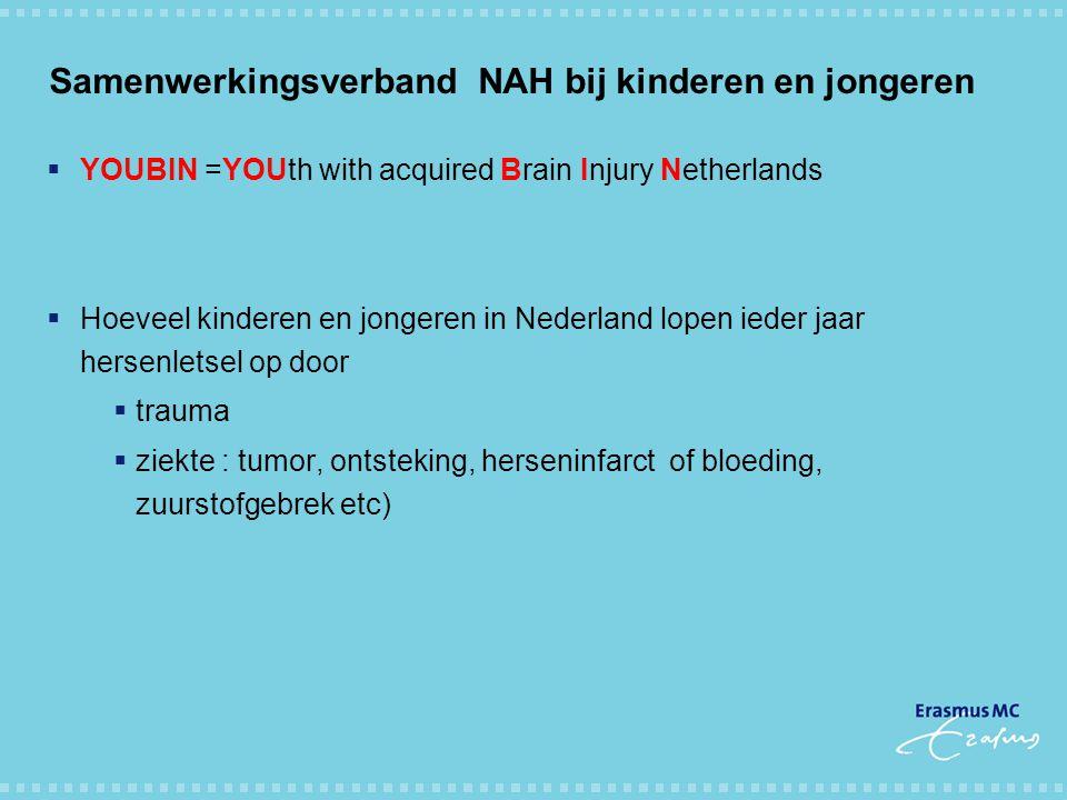 Samenwerkingsverband NAH bij kinderen en jongeren