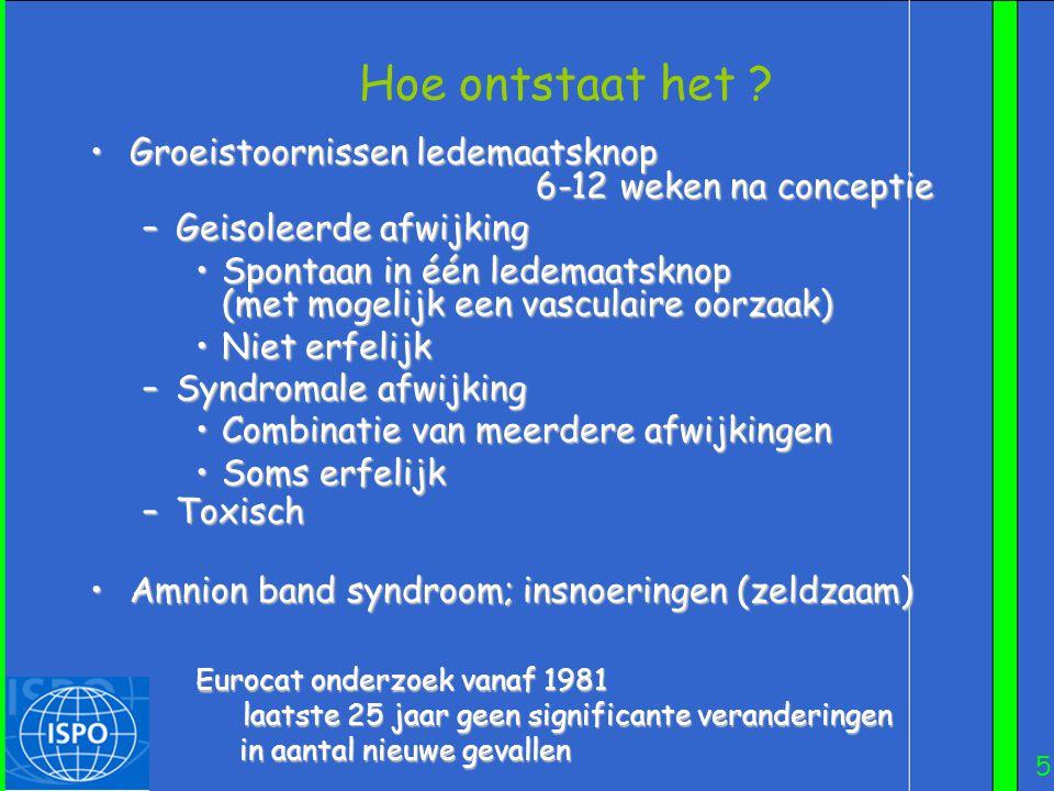 Hoe ontstaat het Groeistoornissen ledemaatsknop 6-12 weken na conceptie.