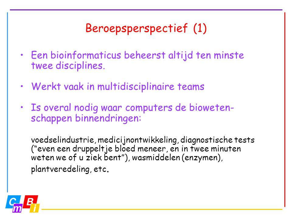 Beroepsperspectief (1)