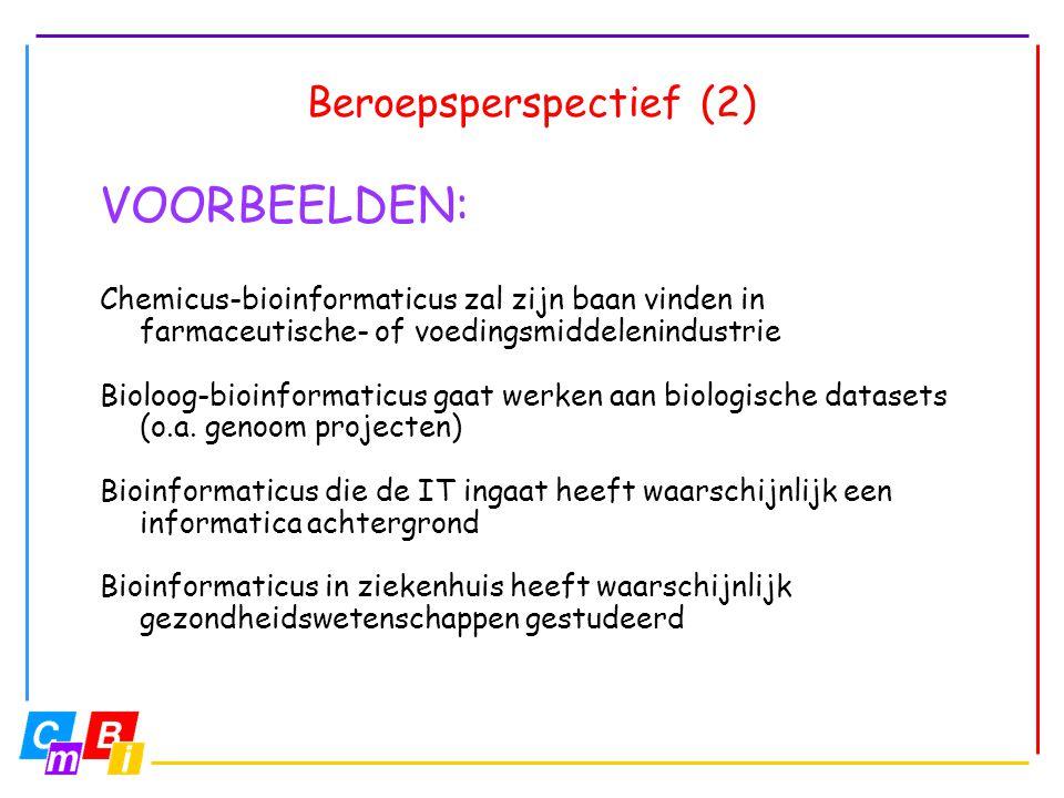 Beroepsperspectief (2)