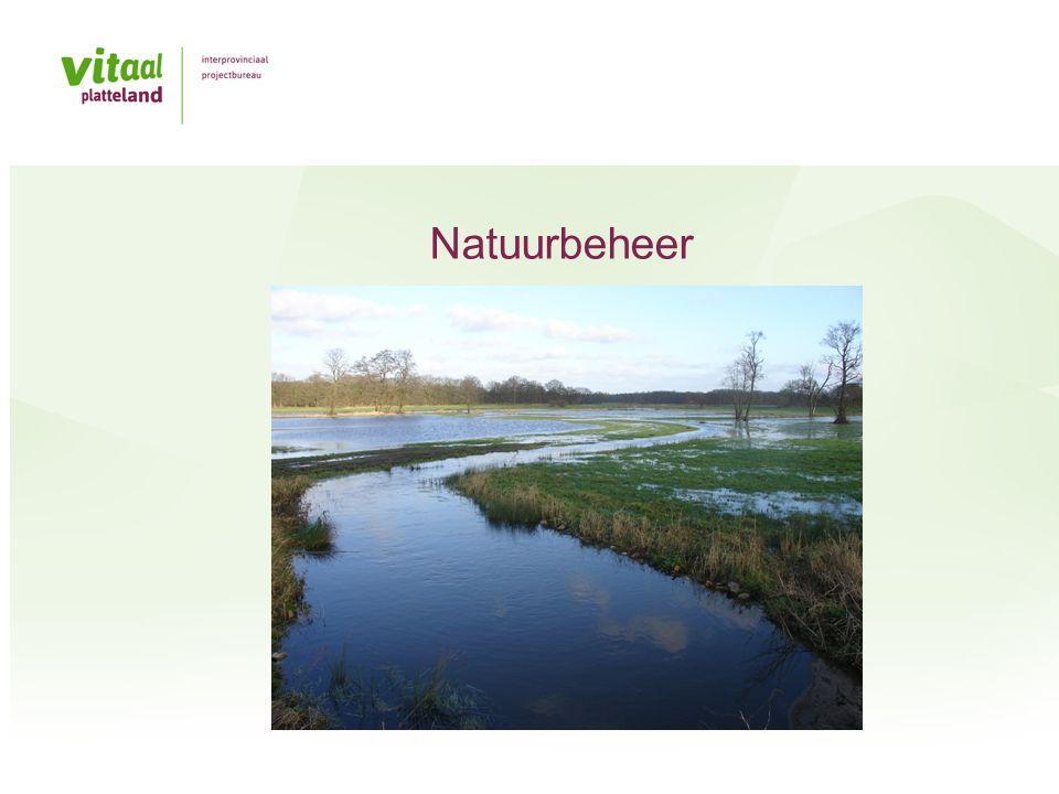 Natuurbeheer