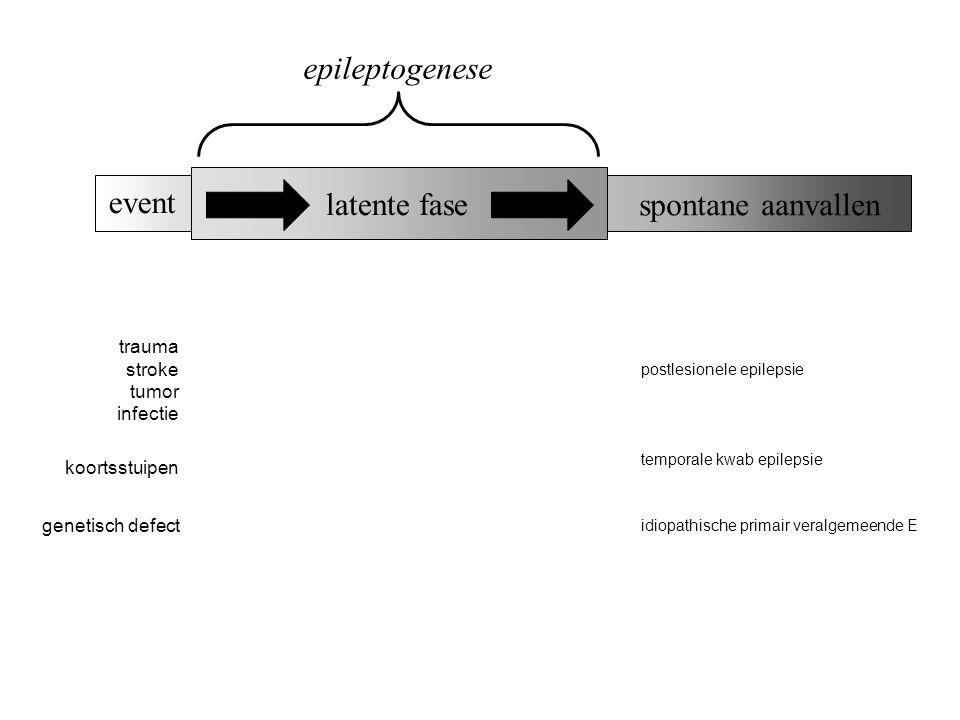 epileptogenese event latente fase spontane aanvallen trauma stroke