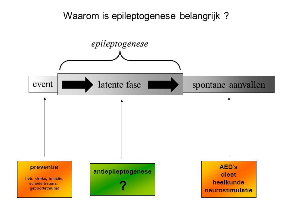 Waarom is epileptogenese belangrijk epileptogenese event