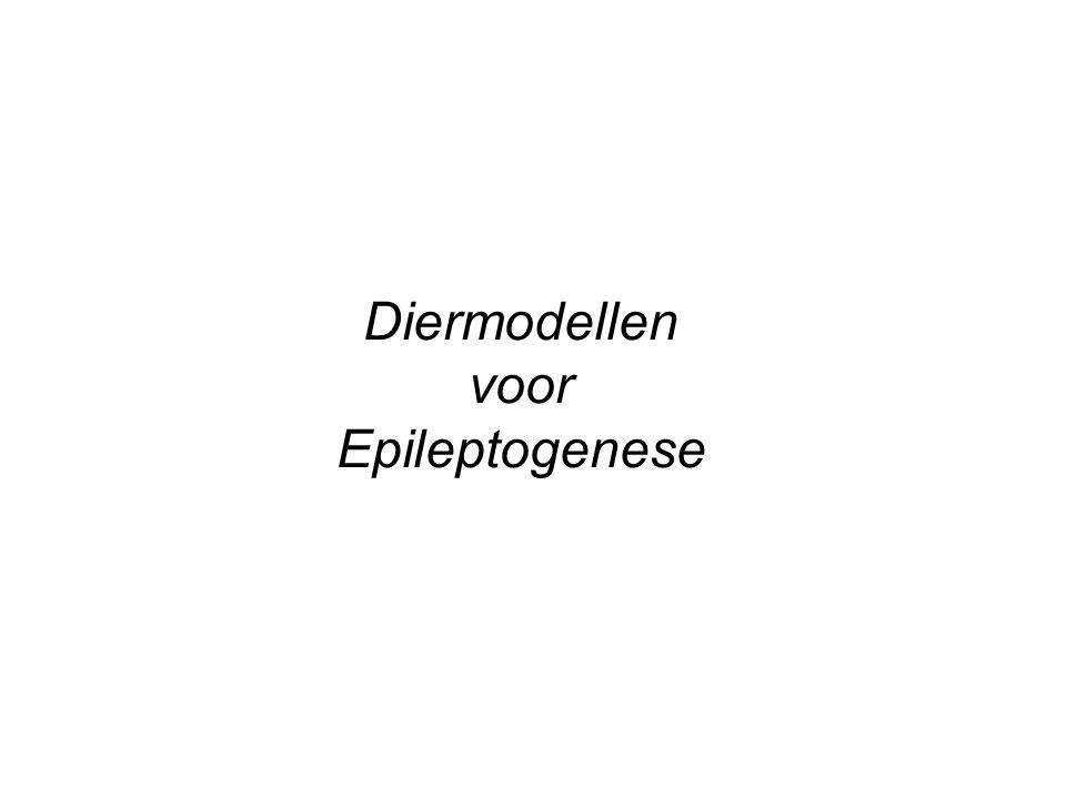 Diermodellen voor Epileptogenese