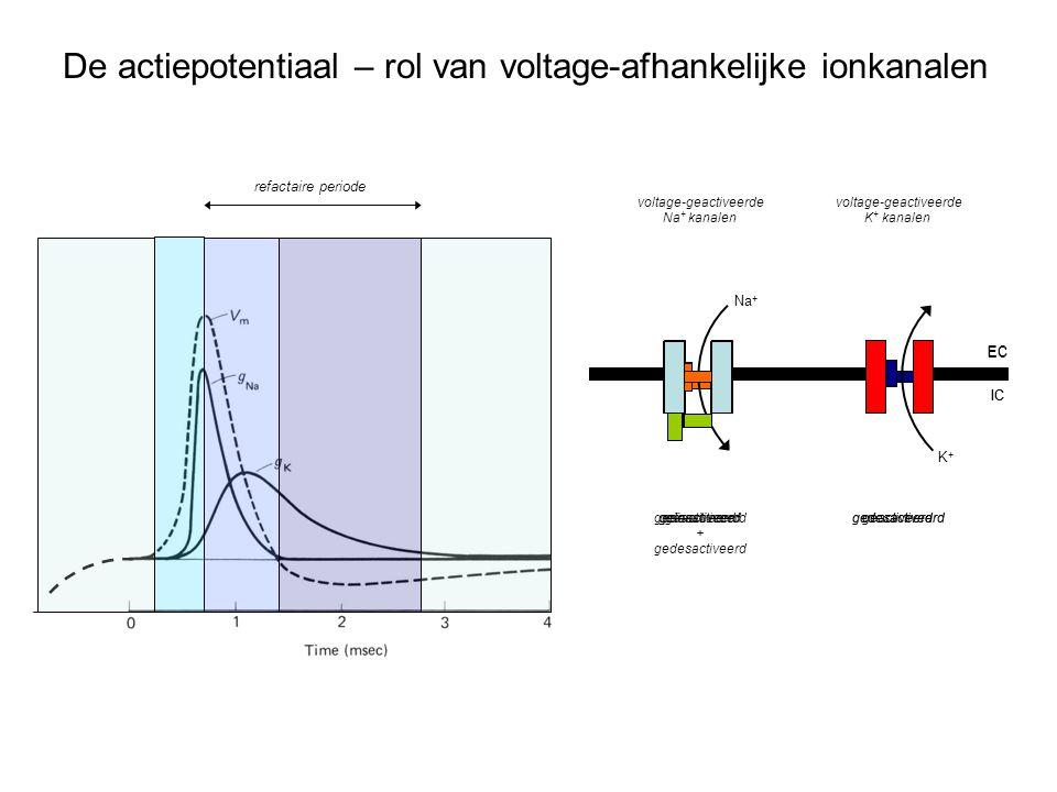 voltage-geactiveerde