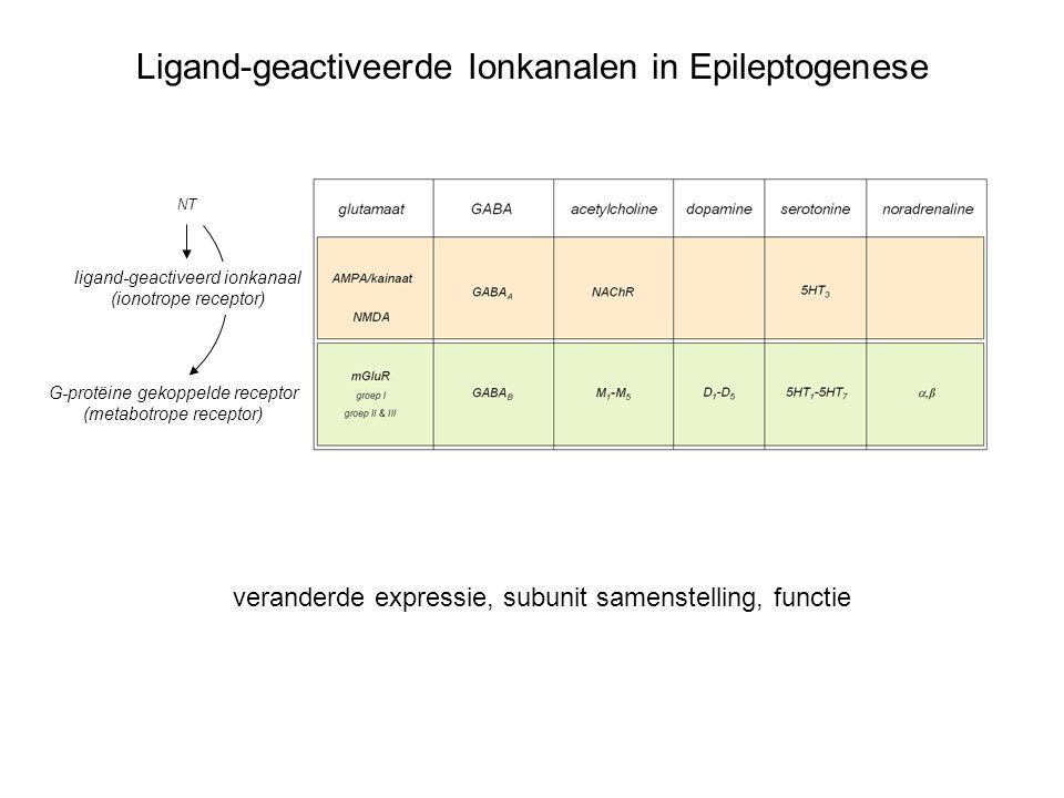 Ligand-geactiveerde Ionkanalen in Epileptogenese