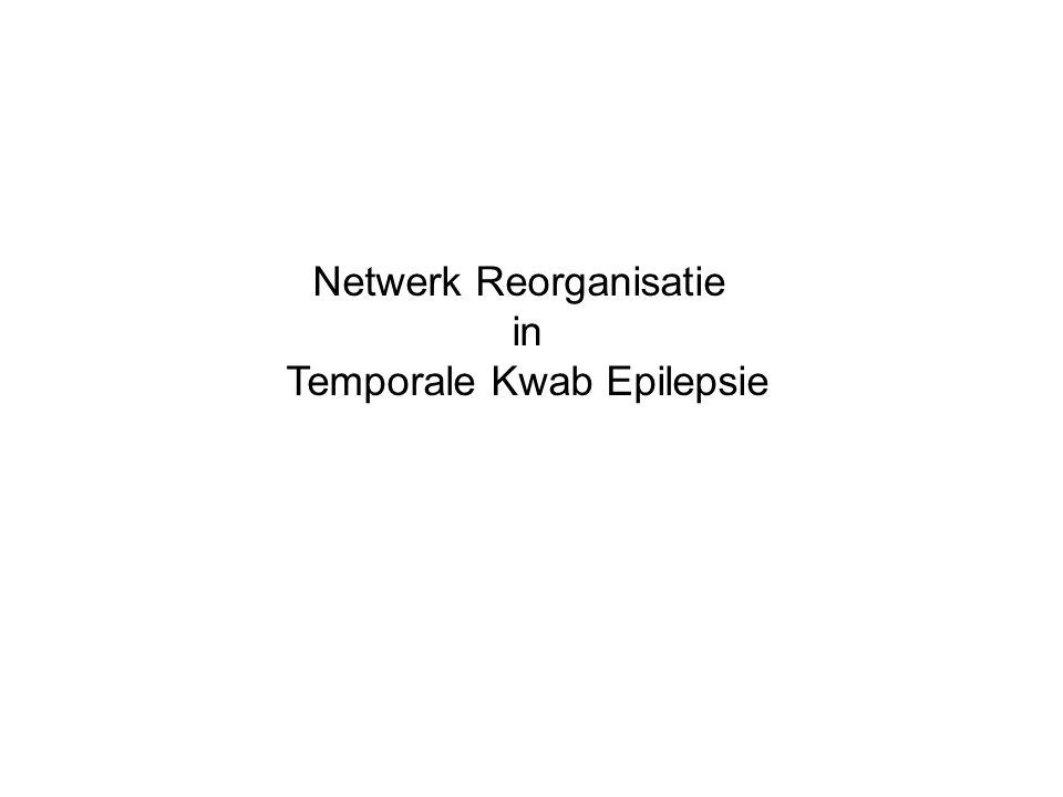 Netwerk Reorganisatie in Temporale Kwab Epilepsie