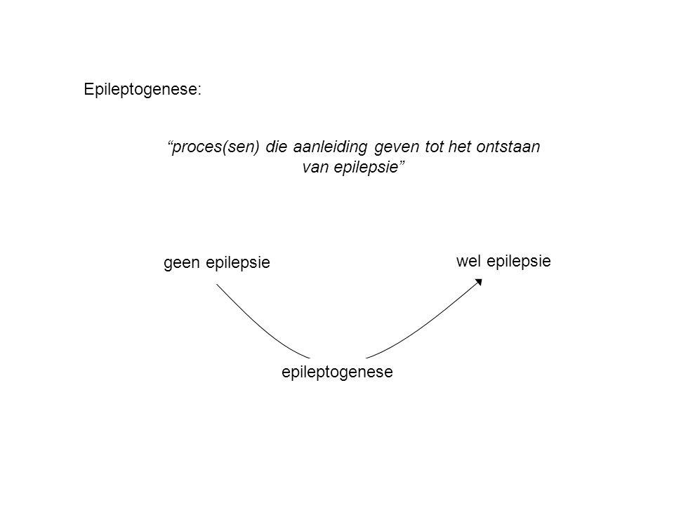 proces(sen) die aanleiding geven tot het ontstaan van epilepsie
