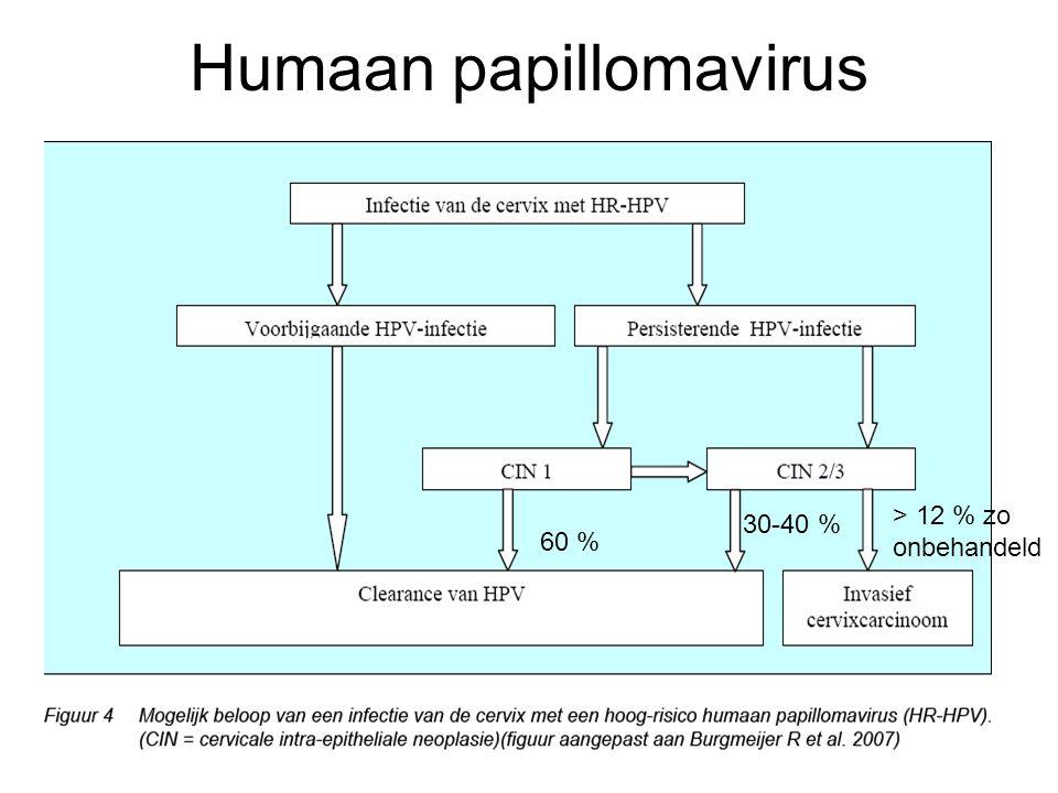 Humaan papillomavirus