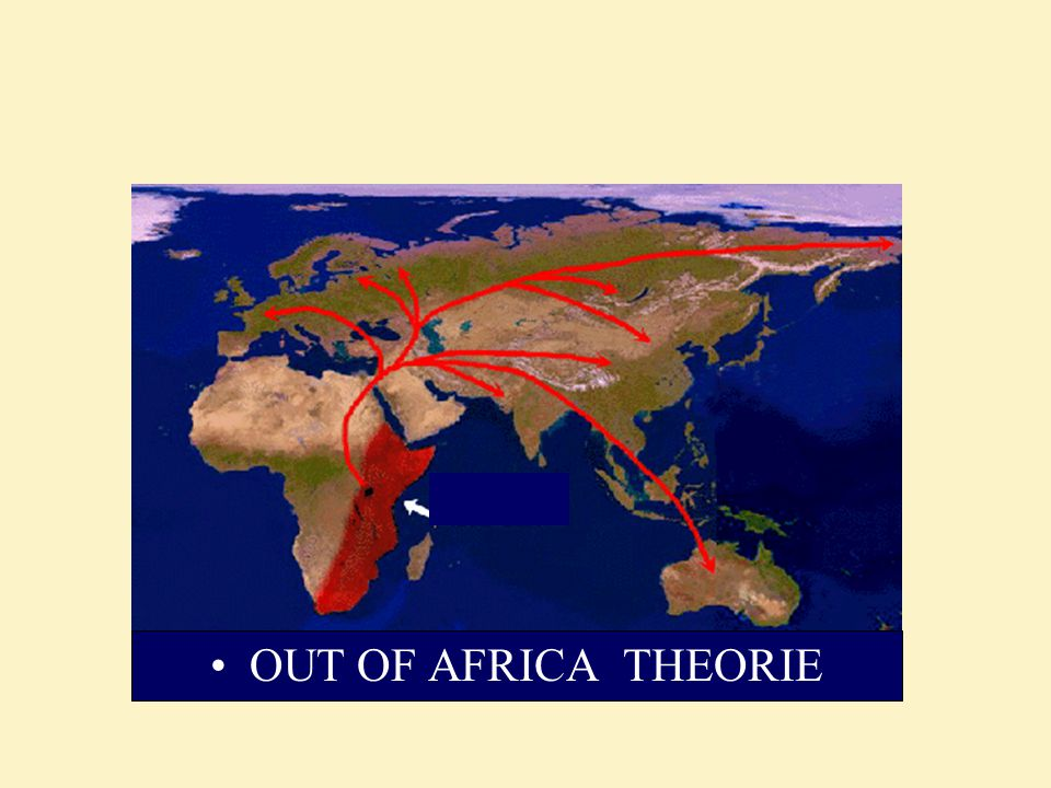 OUT OF AFRICA THEORIE