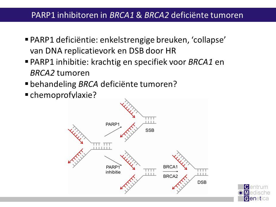 PARP1 inhibitoren in BRCA1 & BRCA2 deficiënte tumoren