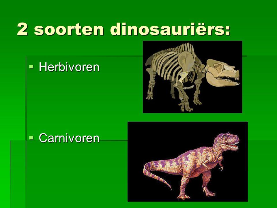 2 soorten dinosauriërs: