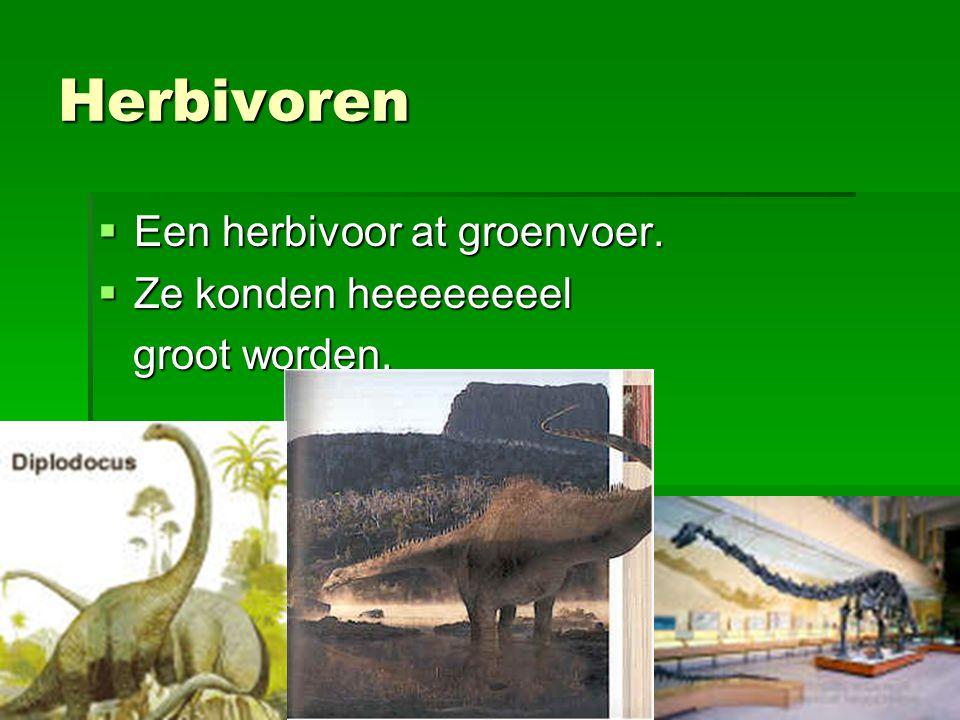 Herbivoren Een herbivoor at groenvoer. Ze konden heeeeeeeel