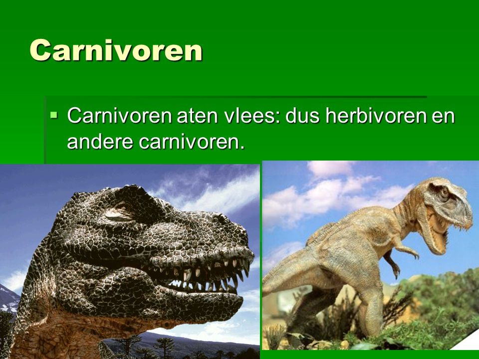 Carnivoren Carnivoren aten vlees: dus herbivoren en andere carnivoren.