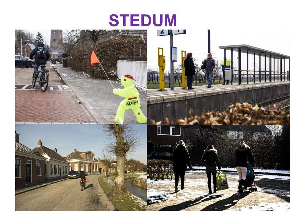 STEDUM