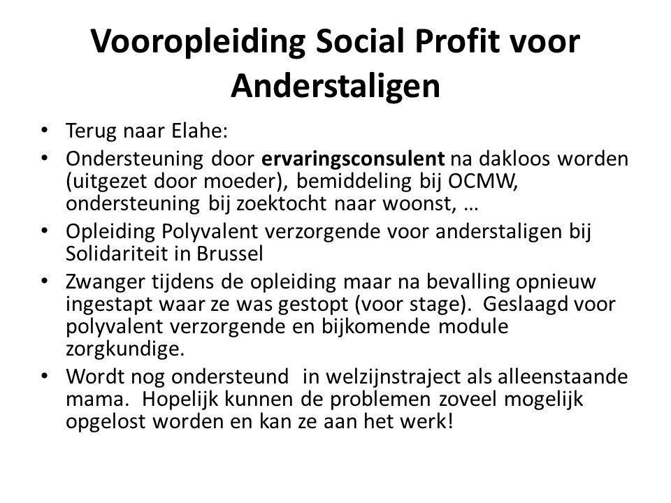 Vooropleiding Social Profit voor Anderstaligen