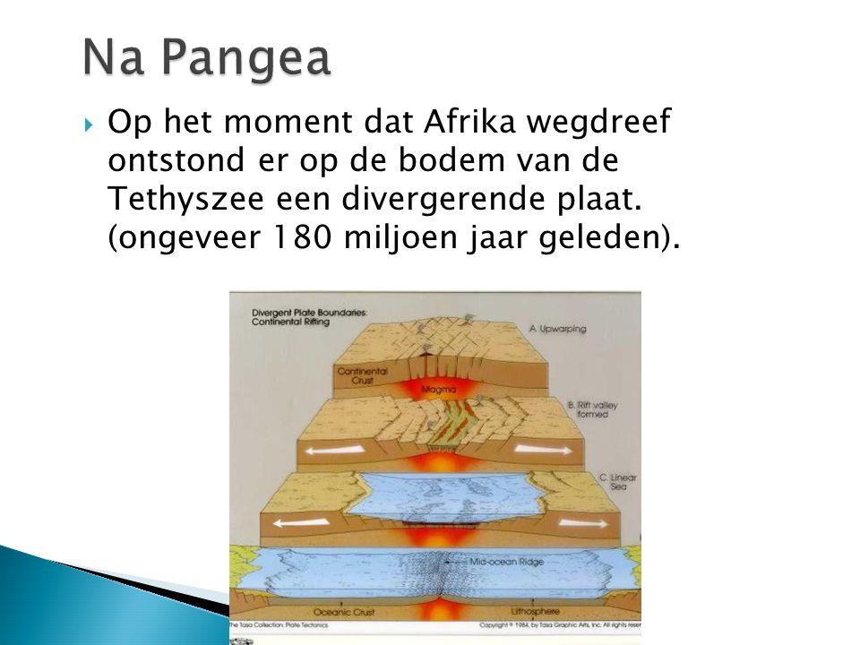 Na Pangea Op het moment dat Afrika wegdreef ontstond er op de bodem van de Tethyszee een divergerende plaat.