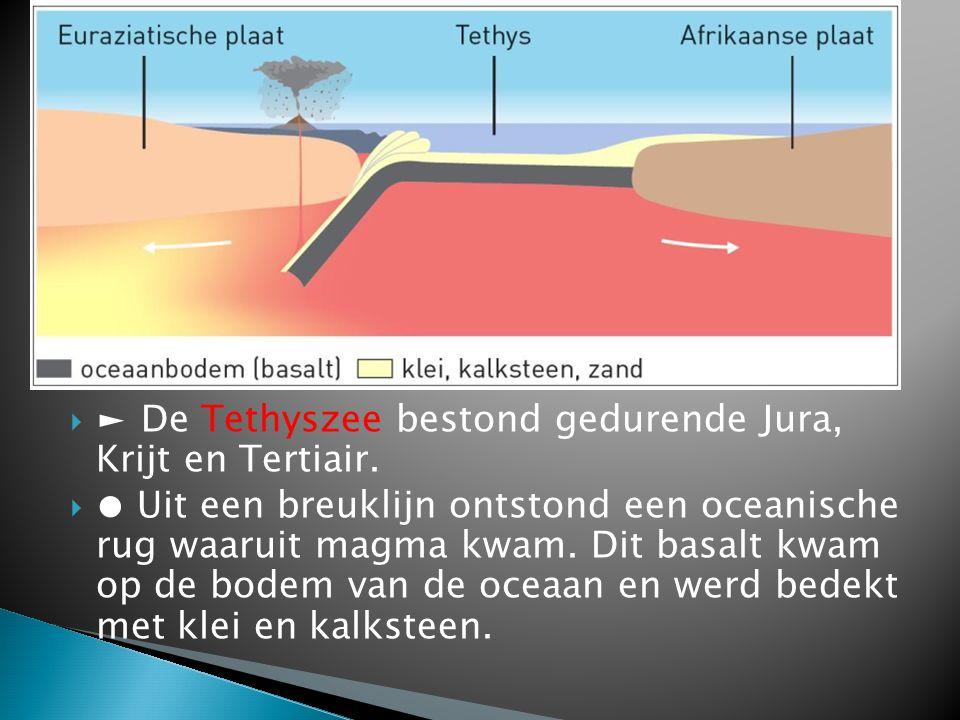 ► De Tethyszee bestond gedurende Jura, Krijt en Tertiair.