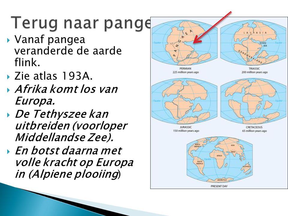 Terug naar pangea Vanaf pangea veranderde de aarde flink.