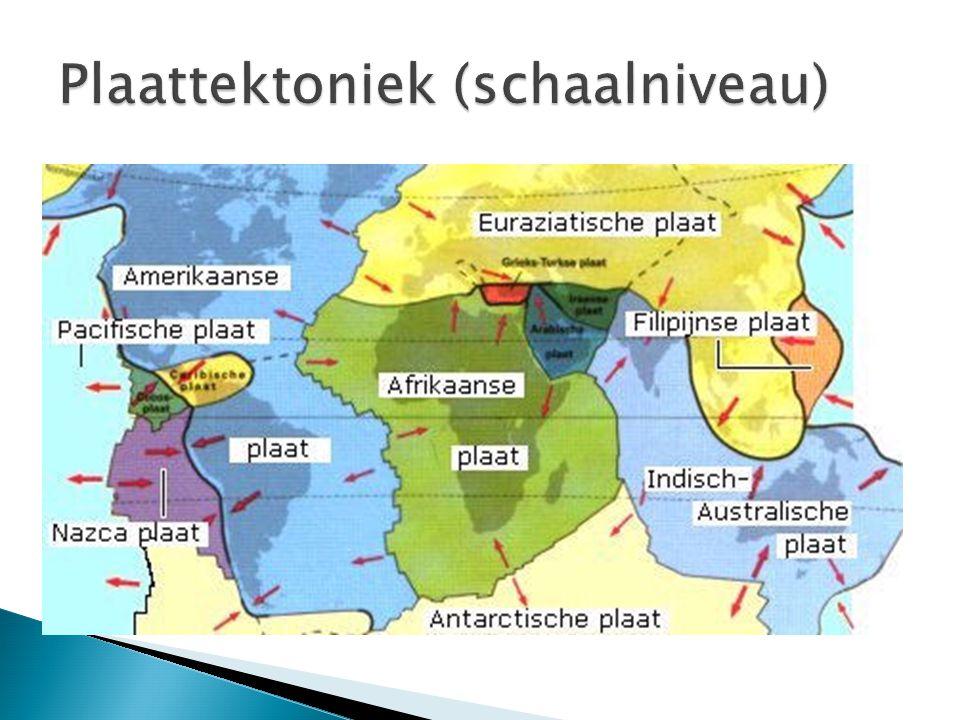 Plaattektoniek (schaalniveau)