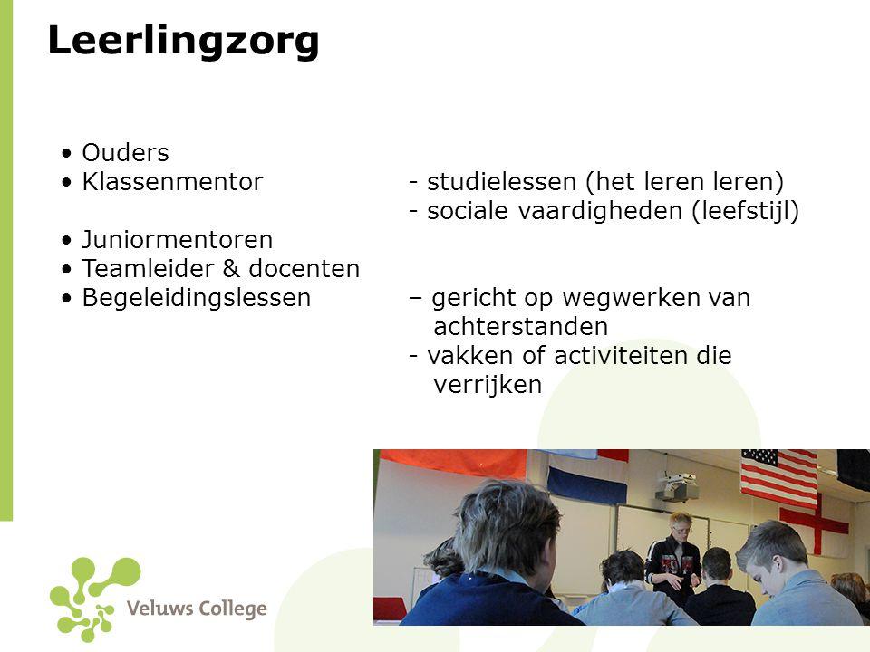 Leerlingzorg Ouders Klassenmentor - studielessen (het leren leren)