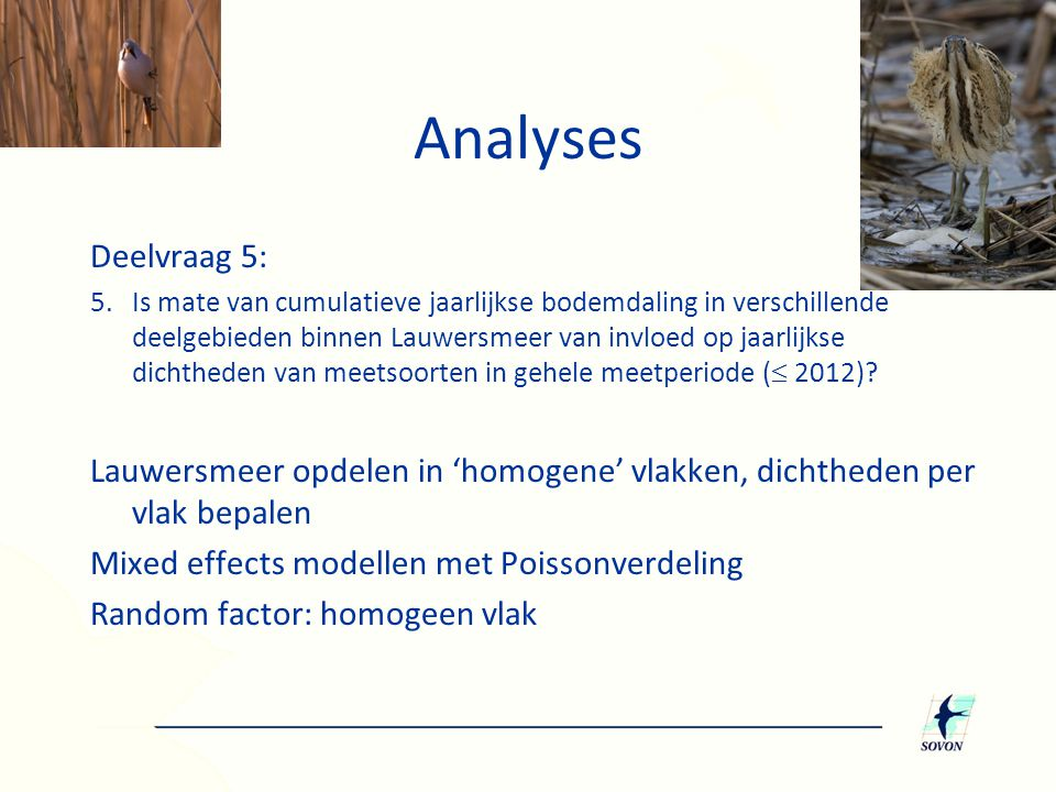 Analyses Deelvraag 5: