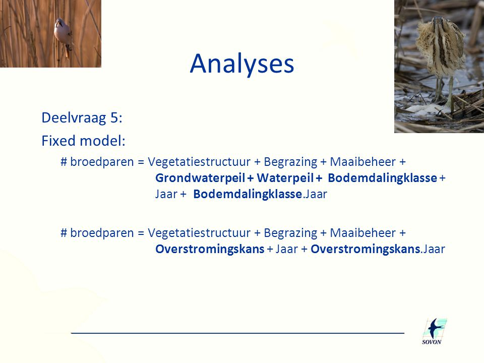 Analyses Deelvraag 5: Fixed model: