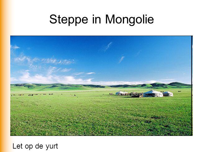 Steppe in Mongolie Let op de yurt