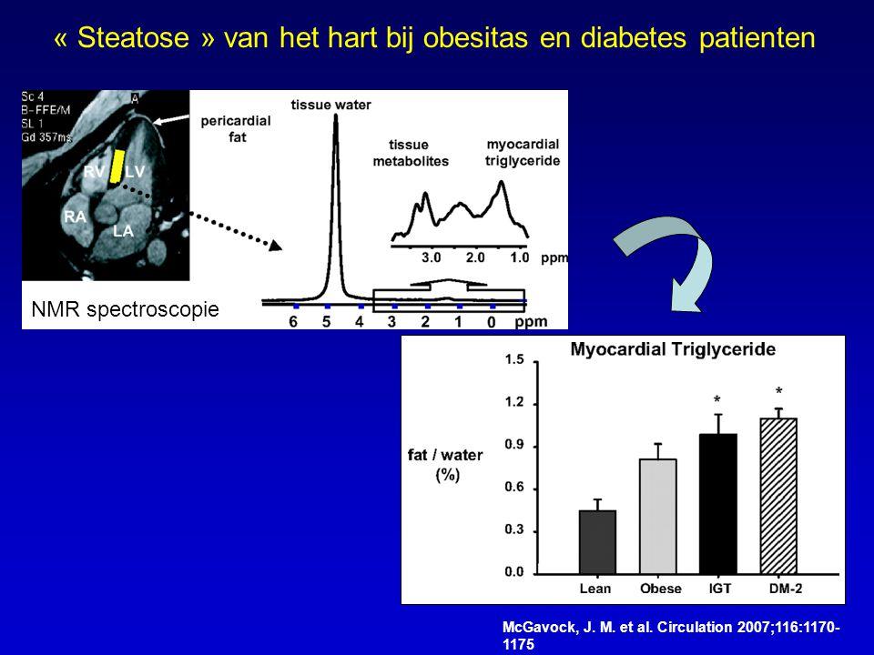 « Steatose » van het hart bij obesitas en diabetes patienten
