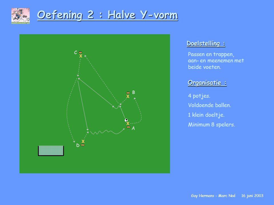 Oefening 2 : Halve Y-vorm