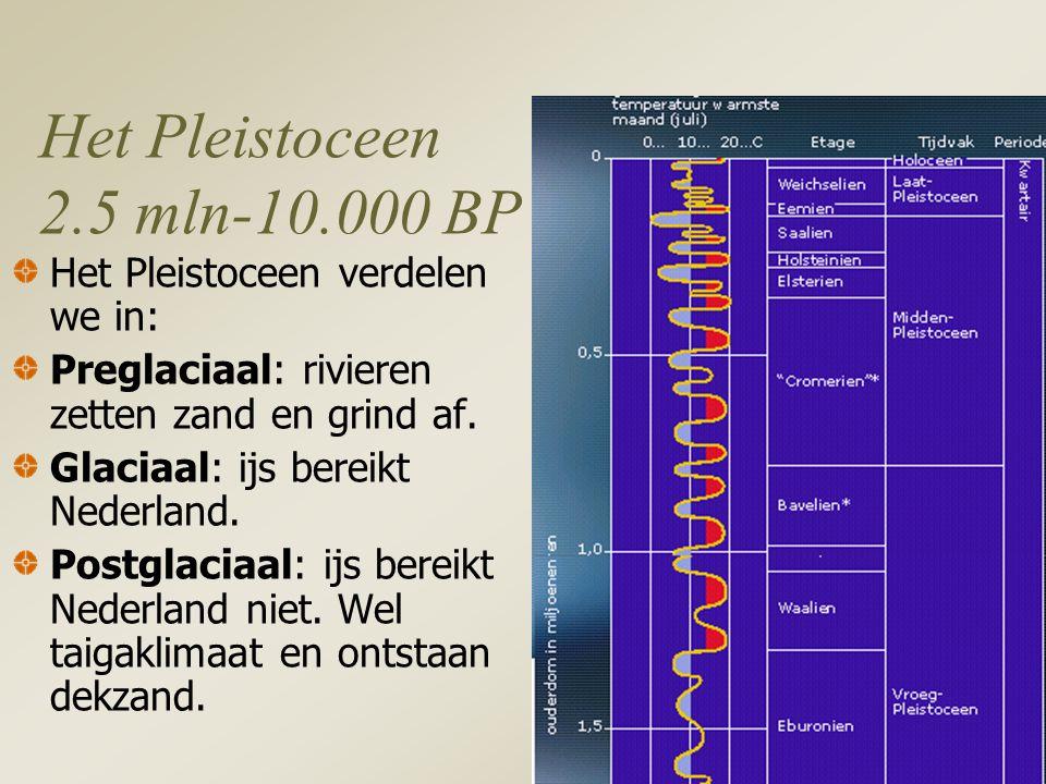 Het Pleistoceen 2.5 mln-10.000 BP