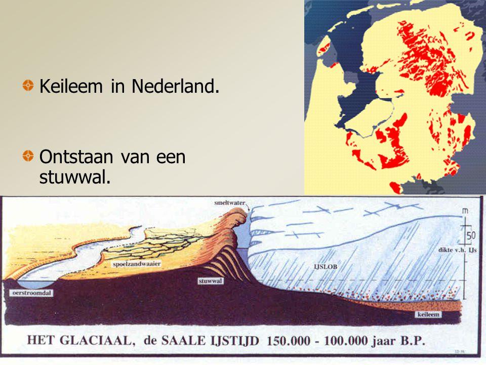 Hand-outs bij de powerpoint voorstelling over het Nederlands Landschap