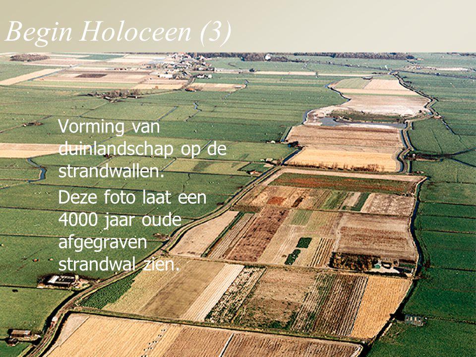 Begin Holoceen (3) Vorming van duinlandschap op de strandwallen.