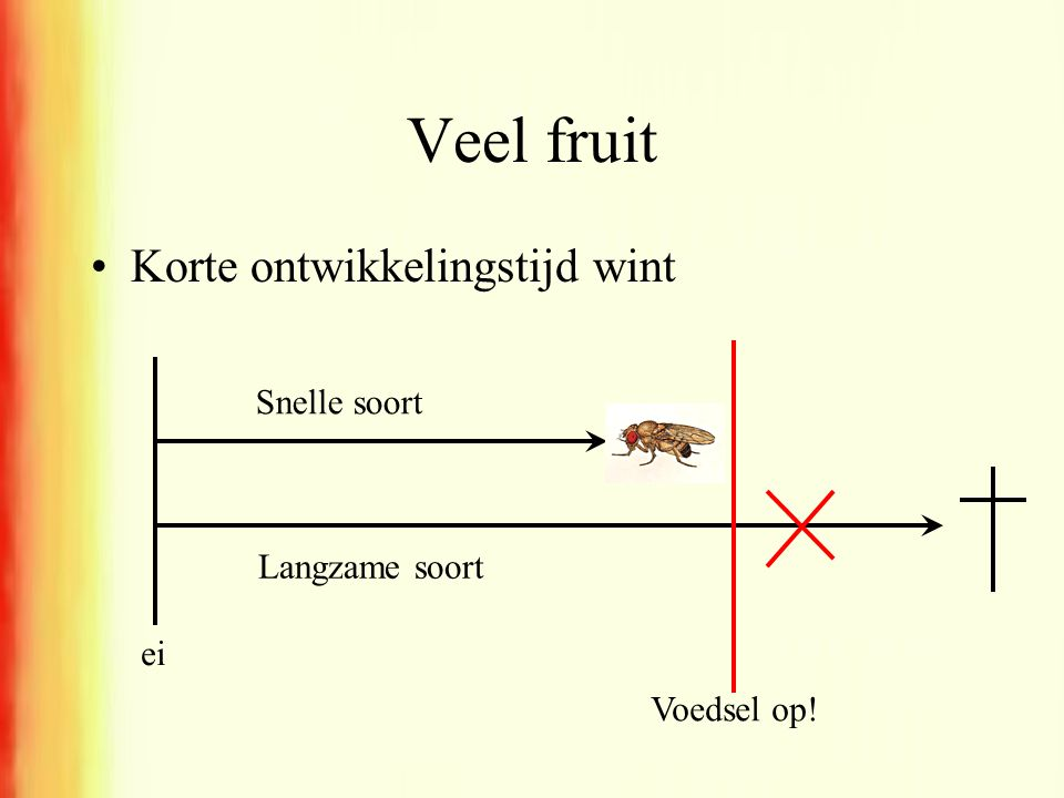Veel fruit Korte ontwikkelingstijd wint Snelle soort Langzame soort ei