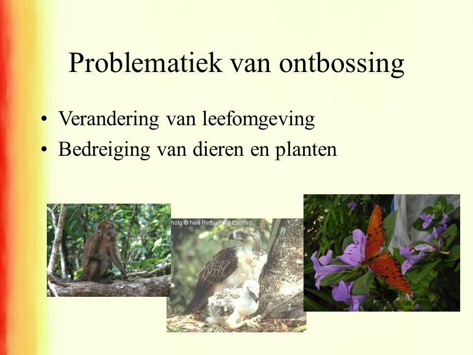 Problematiek van ontbossing