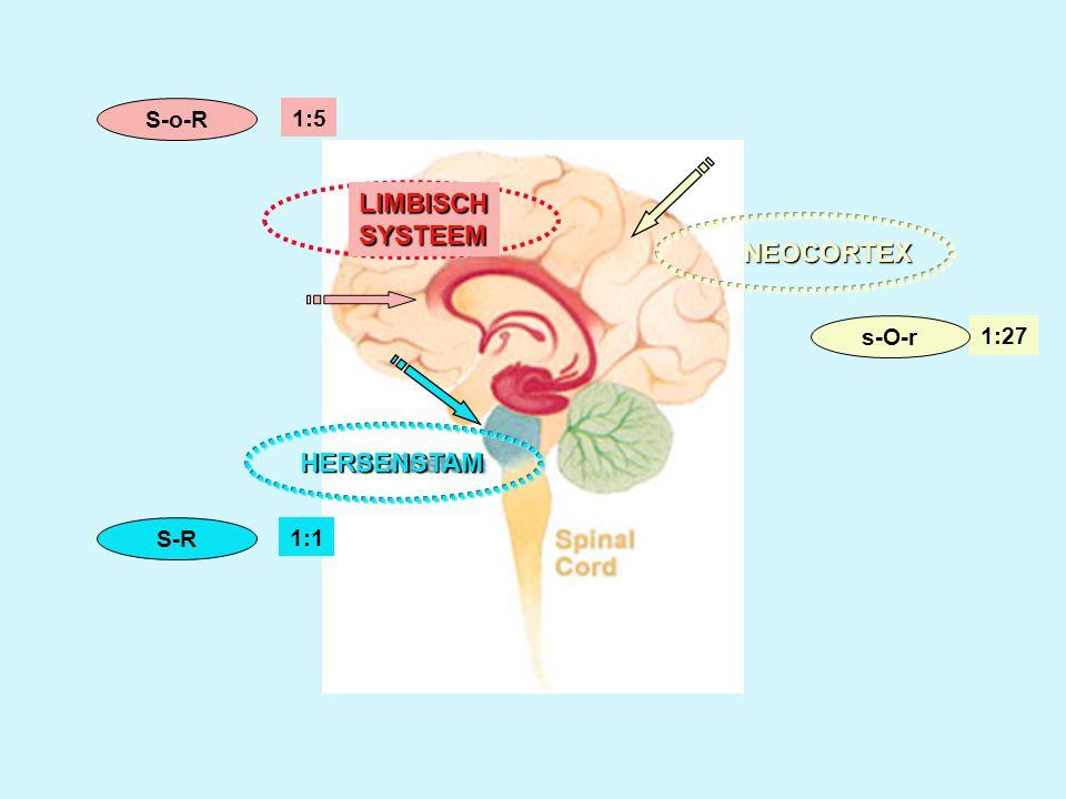 S-o-R 1:5 LIMBISCH SYSTEEM NEOCORTEX s-O-r 1:27 HERSENSTAM S-R 1:1