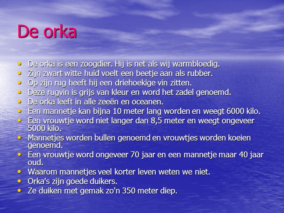 De orka De orka is een zoogdier. Hij is net als wij warmbloedig.