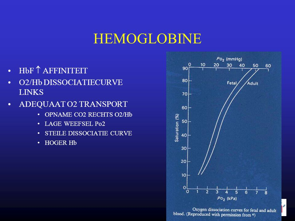 HEMOGLOBINE HbF  AFFINITEIT O2/Hb DISSOCIATIECURVE LINKS